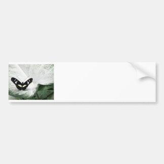 Black Butterfly on White Caladium Leaf Car Bumper Sticker