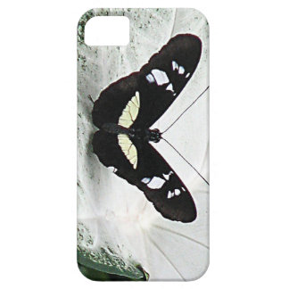 Black Butterfly on White Caladium Leaf iPhone SE/5/5s Case