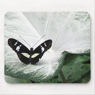 Black Butterfly on White Caladium Leaf Mouse Pad