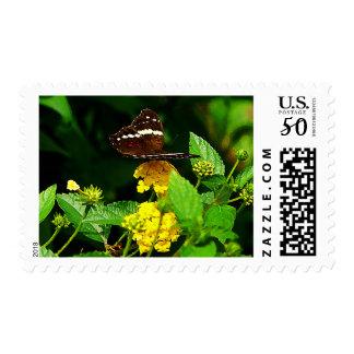 Black Butterfly on Yellow Lantana Postage