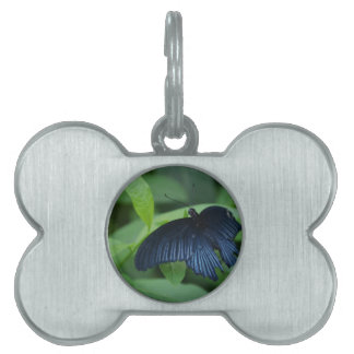 Black Butterfly Pet Name Tag