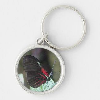 Black Butterfly Premium Keychain
