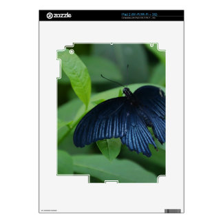 Black Butterfly Skin For The iPad 2