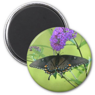 Black Butterfly Templete Items Refrigerator Magnet