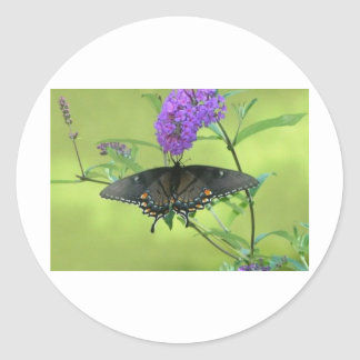 Black Butterfly Templete Items Round Stickers