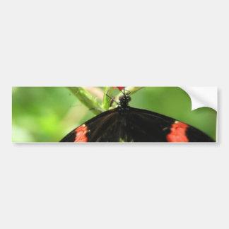 Black Butterfly with Pink Bumper Sticker Car Bumper Sticker