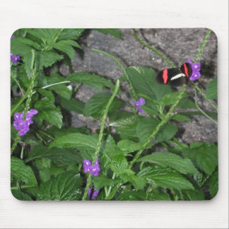 Black Butterfly with Red wing Stripes Mousepad