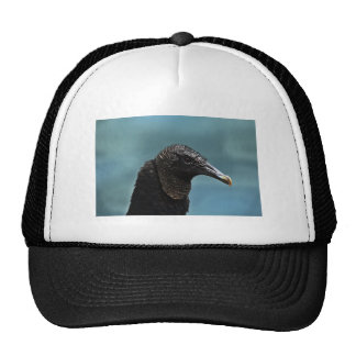 Black Buzzard Trucker Hat