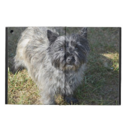 iPad Air Powis Case with Cairn Terrier Phone Cases design