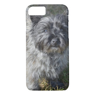 Black Cairn Terrier iPhone 8/7 Case