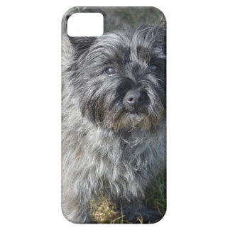 Black Cairn Terrier iPhone SE/5/5s Case