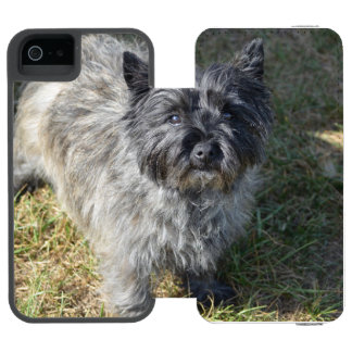 Black Cairn Terrier Wallet Case For iPhone SE/5/5s