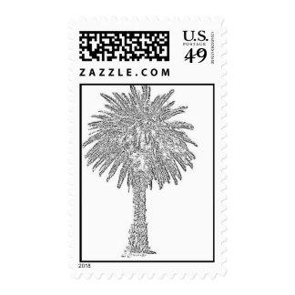Black Canary Island Date Palm Postage Stamp