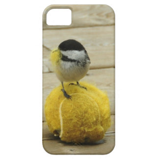 Black-cap chickadee having a ball Iphone 5 cover. iPhone SE/5/5s Case