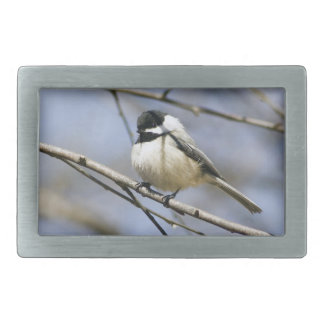 Black Capped Chicadee Belt Buckles
