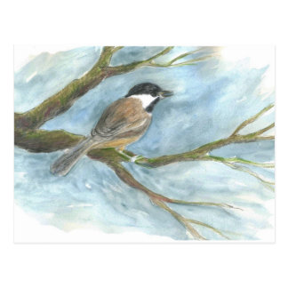 Black Capped Chick-a-Dee in Spring Postcard