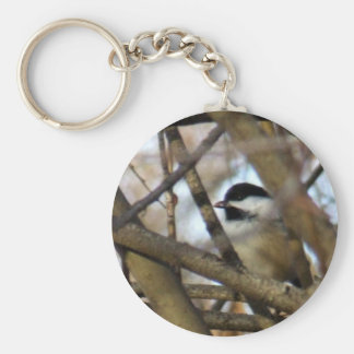 Black-capped Chickadee Basic Round Button Keychain