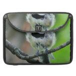 Black Capped Chickadee Bird MacBook Pro Sleeve