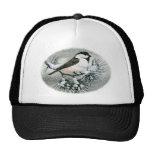 Black Capped Chickadee Bird Mesh Hats