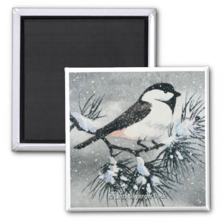 Black Capped Chickadee Bird Square 2 Inch Square Magnet