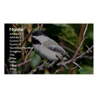 Black-capped chickadee Double-Sided standard business cards (Pack of 100)