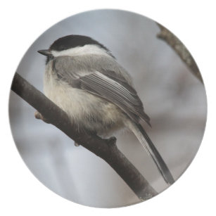 BLACK CAPPED CHICADEE BIRD ON SNOWY BERRY TREE LIGHT SWITCH PLATE COVER