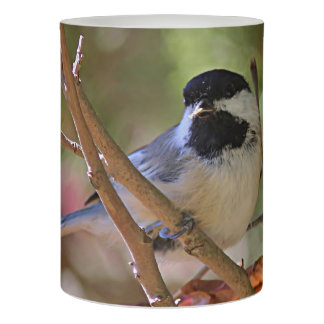 Black-capped chickadee flameless candle