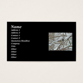 Black-Capped Chickadee in Snow Business Card