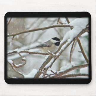 Black-Capped Chickadee in Snow Storm Mouse Pad