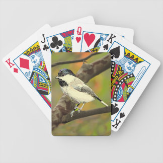 Black Capped Chickadee (Maine and Massachusetts).j Bicycle Playing Cards