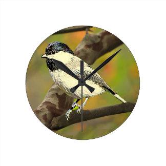 Black Capped Chickadee (Maine and Massachusetts).j Round Clock