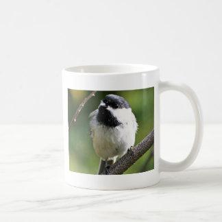Black-capped chickadee mug