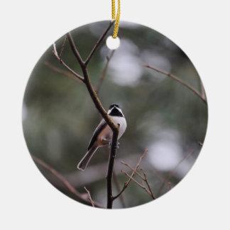 Black Capped Chickadee on Branch Ceramic Ornament