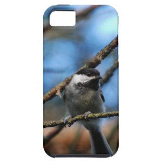 Black-Capped Chickadee Wraps Toes Around Narrow Tw iPhone SE/5/5s Case