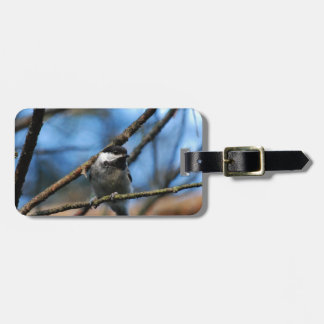 Black-Capped Chickadee Wraps Toes Around Narrow Tw Luggage Tag