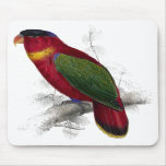 Black-Capped Lory by Edward Lear Mousepads