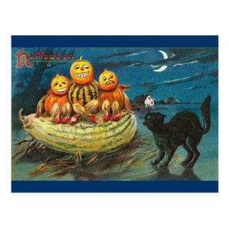black cat, 3 jackolanterns postcard