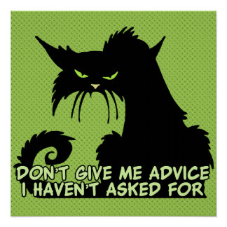 Black Cat Advice Saying Perfect Poster