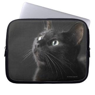 Black cat against black background, close-up computer sleeve
