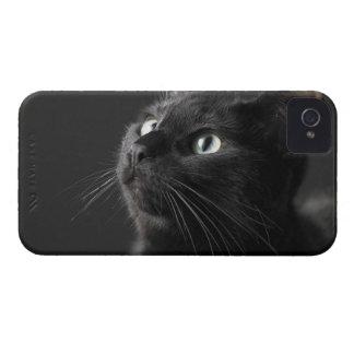 Black cat against black background, close-up iPhone 4 Case-Mate cases