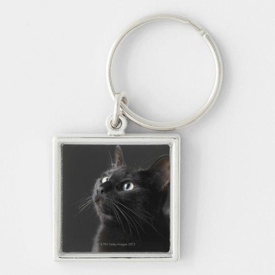 Black cat against black background, close-up keychain
