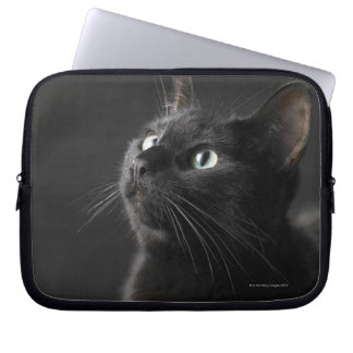 Black cat against black background, close-up computer sleeve