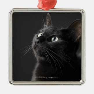 Black cat against black background, close-up square metal christmas ornament