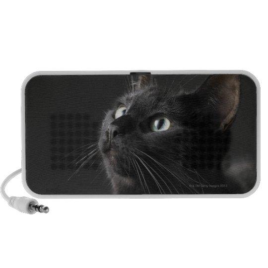 Black cat against black background, close-up portable speaker