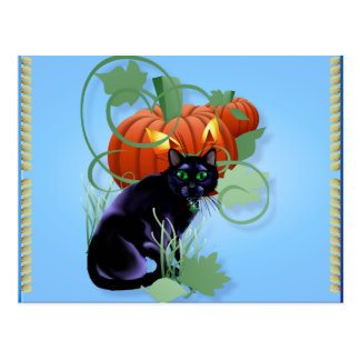 Black Cat and Glaring Pumpkin Postcard
