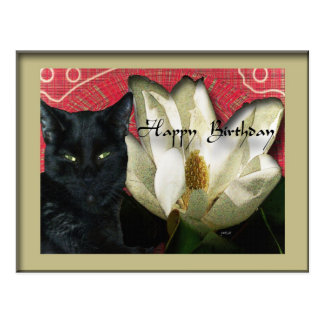 Black Cat and Magnolia Postcard
