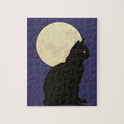 Black Cat and the Moon Puzzle
