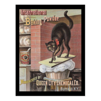 Black Cat Baking Soda Buffalo New York Post Card