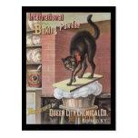 Black Cat Baking Soda Buffalo New York Postcard
