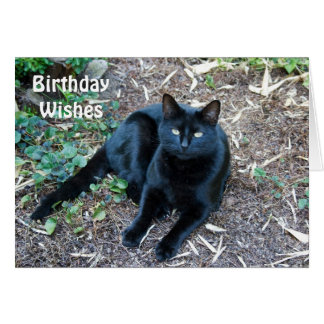 Black Cat Birthday Card 1